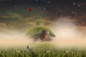 landscape, boy, grass-2254651.jpg